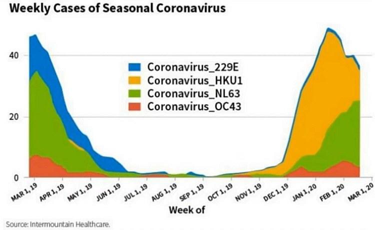 viren saison corona viren arten